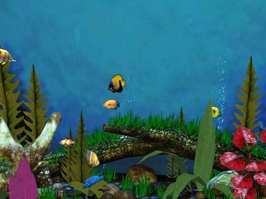 fish aquarium 3d 03%5BMihanDownload.com%5D اسكرين سيور اكواريوم ماهيFish Aquarium 3D Screensaver