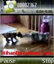 BOXER%5BMihanDownload.com%5D کلیپ های خنده دار موبایل از گربه های با مزه