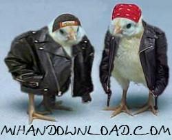 jojo%5BMihanDownload.com%5D مجموعه عکس های جدید زیبا برای موبایل با موضوعات مختلف